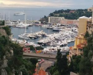 Central Flat Monaco